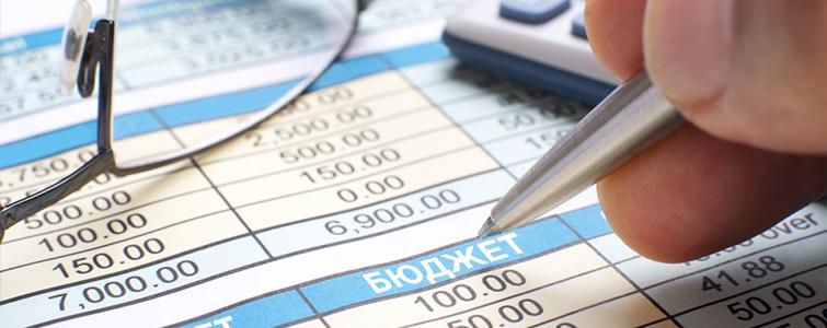 Контроль выполнения бюджета