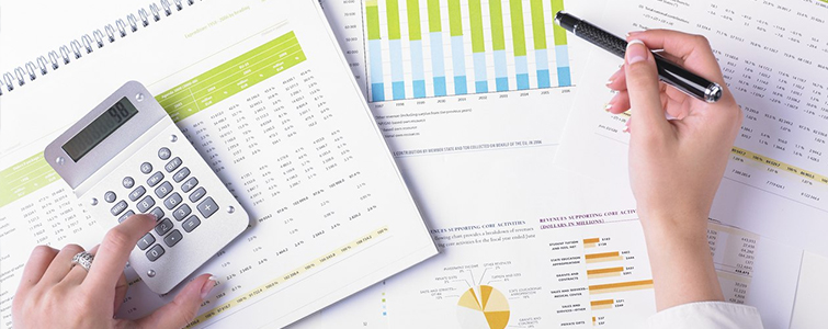 Organization of the financial and accounting reporting system